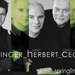 Heginger Cech Herbert 2